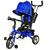 Nagar International Attractive Multipurpose Metal Baby Tricycle for 2 to 6 Yrs (Blue)
