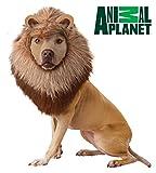 Disfraz de Perro de león de Planeta Animal, Extra pequeño