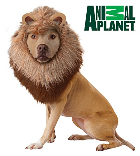 Planet Animal Hund Kostüme (Animal Planet Löwe Hunde Kostüm,)