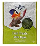 #4: FishScience Fish Treats With Algae (Stick on the Glass) 9gms