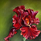 Bild Blume Iris Malerei Kunst Original Ölmalerei Gemälde 20x20 cm