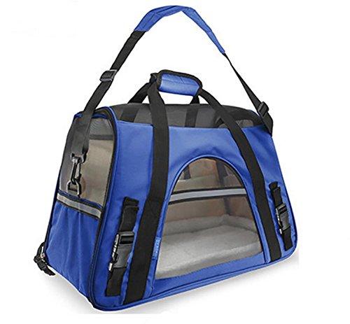AnGe Katzentransportbox, Faltbare Transportbox katzen und Hunde, Klappbare Hundetransportbox , blue , large