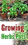 Growing Herbs Pots: All About Herb Pots For Indoor And Outdoor Gardens