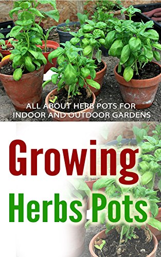 growing-herbs-pots-all-about-herb-pots-for-indoor-and-outdoor-gardens
