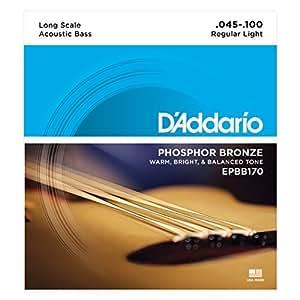 D'Addario Cordes en bronze phosphoreux pour basse acoustique D'Addario EPBB170, cordes longues, 45-100