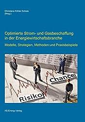 Optimierte Strom- und Gasbeschaffung in der Energiewirtschaftsbranche: Modelle, Strategien, Methoden und Praxisbeispiele