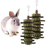 Kleintiere Kauenspielzeug Apfelholz Kauen Stöcke Zweige Pet Snacks Kauen Spielzeug Hamstersnacks mit Bio-Graszähnen Schleifen Molarkugel für Kaninchen Chinchillas Meerschweinchenhörnchen,2 Stück