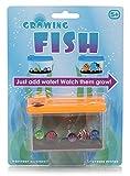 Tobar Wachsender Fisch Spielzeug