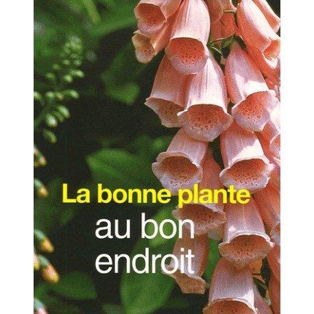 La bonne plante...