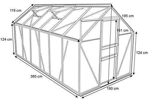 Zelsius Aluminium Gewächshaus für den Garten   380 x 190 cm   6 mm Platten   Vielseitig nutzbar als Treibhaus, Tomatenhaus, Frühbeet und Pflanzenhaus