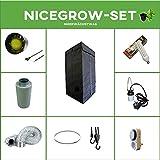 Growset 80 Airontek Blüte - Set Energiesparlampe ESL Solux 120W