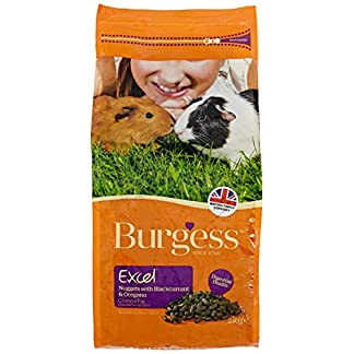 Burgess Excel Guinea Pig Nuggets with Mint, 10kg 21