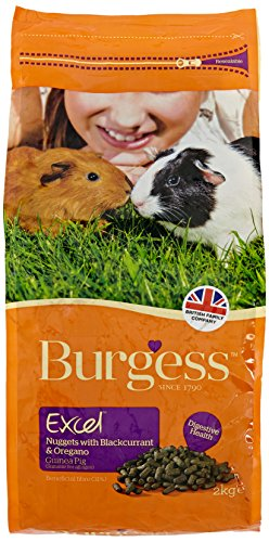 Burgess Excel Guinea Pig Nuggets with Mint, 10kg 1
