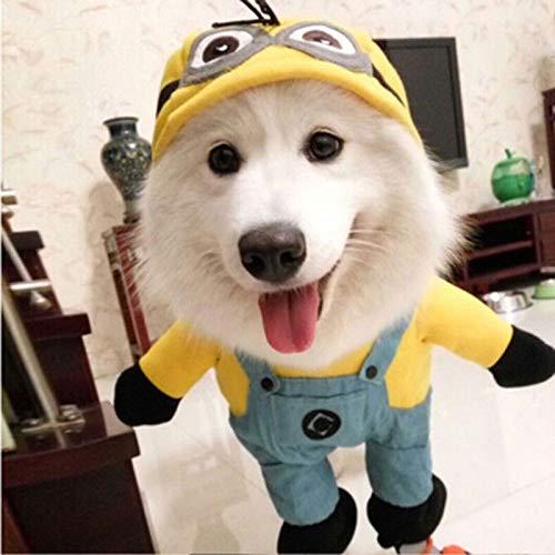 Kostüm Halloween Minions - FidgetGear Hundekostüm Minion-Kostüm für Halloween, Gelb
