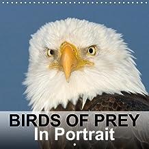 Birds Of Prey In Portrait (Wall Calendar 2018 300 × 300 mm Square): Birds Of Prey In Portrait - Bird Photo Calendar by birdimagency.com (Monthly calendar, 14 pages )