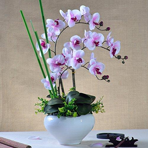 Beata.T Puthe Moth Orchid Fiori artificiali di emulazione di plastica di fiori di seta Fiori secchi Fiori decorazioni di fiori trascorrere cinese paesaggi in miniatura Home Decor,elegante rosa)