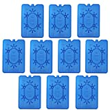 NEMT - 10 confezioni di mattonelle di ghiaccio piatte da 200 ml, 11 x 16,5 x 1,5 cm