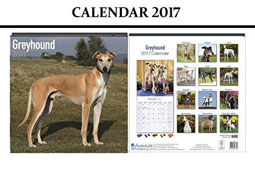greyhound-dogs-2017-calendar