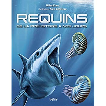 Requins - De la préhistoire à nos jours
