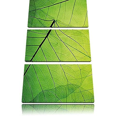 Bella gara foglie verdi 3 pezzi picture tela dell'immagine su tela 120x80, XXL enormi immagini completamente Pagina con la barella, stampe d'arte sul murale cornice gänstiger come la pittura o un dipinto ad olio, non un manifesto o un baner