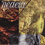Songtexte von Neaera - The Rising Tide of Oblivion