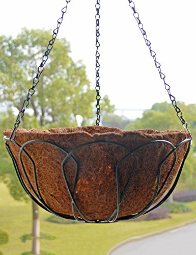 Environmentally Friendly rotonda Ferro battuto Hanging Orchid pentole, vasi sospesi, vasi da fiori, Hanging Planter Fiore Con Pothook