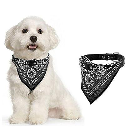 Alcyoneus Adjustable Puppy Pet Dog Cat Neck Scarf Bandana Faux Leather Collar Neckerchief (S, Black) 1