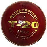 PS-Pilot-T-20-Cricket-Ball