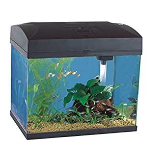 20L Black Classic Aquarium - Rectangular Shaped Fish Tank - Advanced 3 Way Filter System - 5 Watt Energy Saving Lamp 20L Black Classic Aquarium – Rectangular Shaped Fish Tank – Advanced 3 Way Filter System – 5 Watt Energy Saving Lamp 51Oeq0zWTpL