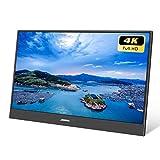 JOHNWILL 4K 15,6 Zoll Tragbarer Monitor FHD 3840 x 2160 IPS-LCD-Monitor mit HDMI-Eingang, eingebautem Lautsprecher, Gaming-Monitor