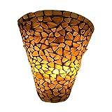 #3: Sanleen Enterprises Modern Home Décor Wall Bracket Light Fixture Decorative Wall Lamp Shade for Living and Dining