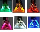 Fully USB wiederaufladbar LED Hunde Geschirr Brustgeschirr Sicherheitsgeschirr Sicher in