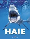 Haie: Faszinierende und bedrohte Jäger der Meere