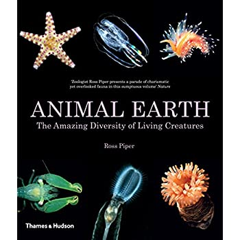 Animal Earth : The Amazing Diversity of Living Creatures