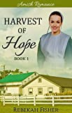 AMISH ROMANCE (Harvest of Hope Book 1)