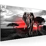 Bilder Afrika Elefant Wandbild Vlies - Leinwand Bild XXL Format Wandbilder Wohnzimmer Wohnung Deko Kunstdrucke Rot Grau 1 Teilig - MADE IN GERMANY - Fertig zum Aufhängen 001212b