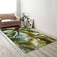 soggiorno tappeto/Divano in pelle scamosciata antiscivolo tappeto camera da letto comodino-B 150*200cm(59x79inch)