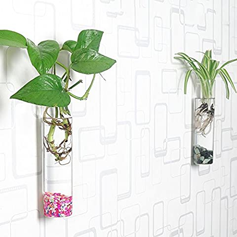 Siyaglass Pack of 2 Crystal Glass Wall Hanging Flower Vase Planter Terrarium Container Flower Pot Cylinder