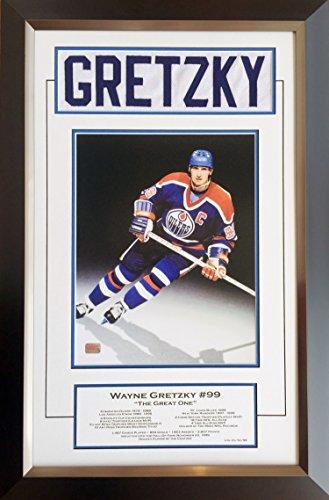 Generic Wayne Gretzky Career Collectible White Namebar Ltd Ed of 99 - Museum Framed -