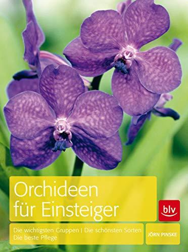 Orchideen für Einsteiger: Die wichtigsten Gruppen · Die schönsten Sorten · Die beste Pflege (BLV) -