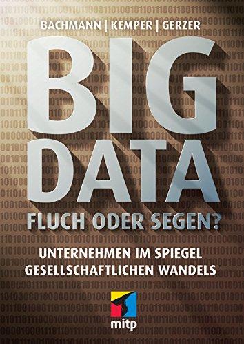 big-data-fluch-oder-segen-unternehmen-im-spiegel-gesellschaftlichen-wandels-mitp-professional