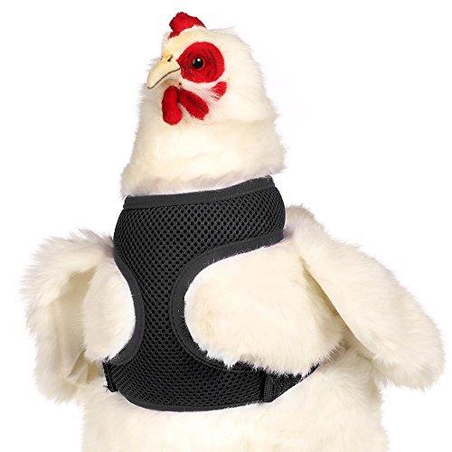 Valhoma Huhn Leine Einstellbar Huhn Groß Schwarz 30-40cm (Chicken Harness)
