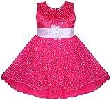 BENKILS Cute Fashion Baby Girl's Dew Drop Party Wear Frock Dress for (True Rani, 2-3 Years)