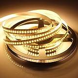 GOESWELL 5M 72W SMD3014 Warmes Weiß Weihnachtsartikel strips 1020Leds IP65 Wasserdicht 3014 LED Streifen Strip Band (Warmes Weiß-IP22)