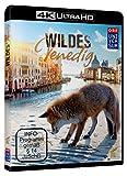 Wildes Venedig (4K Ultra kostenlos online stream