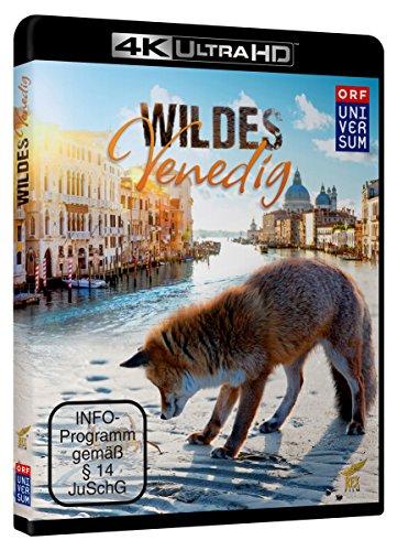 Wildes Venedig - 4k Ultra HD Blu-ray