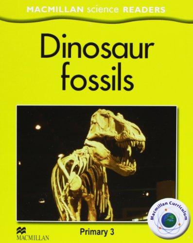 MSR 3 Dinosaur fossils