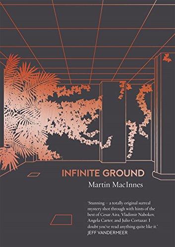 infinite-ground-english-edition