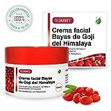 Tillmann's Goji Cream 100ml - Crema Hidratante Facial Bayas De Goji - Mascarilla Antiedad Goji Berries Con Acido Hialuronico Y Retinol - Sin Parabenos