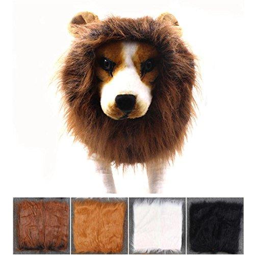 stüm, Mittel Groß Hund Perücke Hut Haar Kleider Halloween Komisch Haustier Dekor , Black (Hai Kostüm Essen)